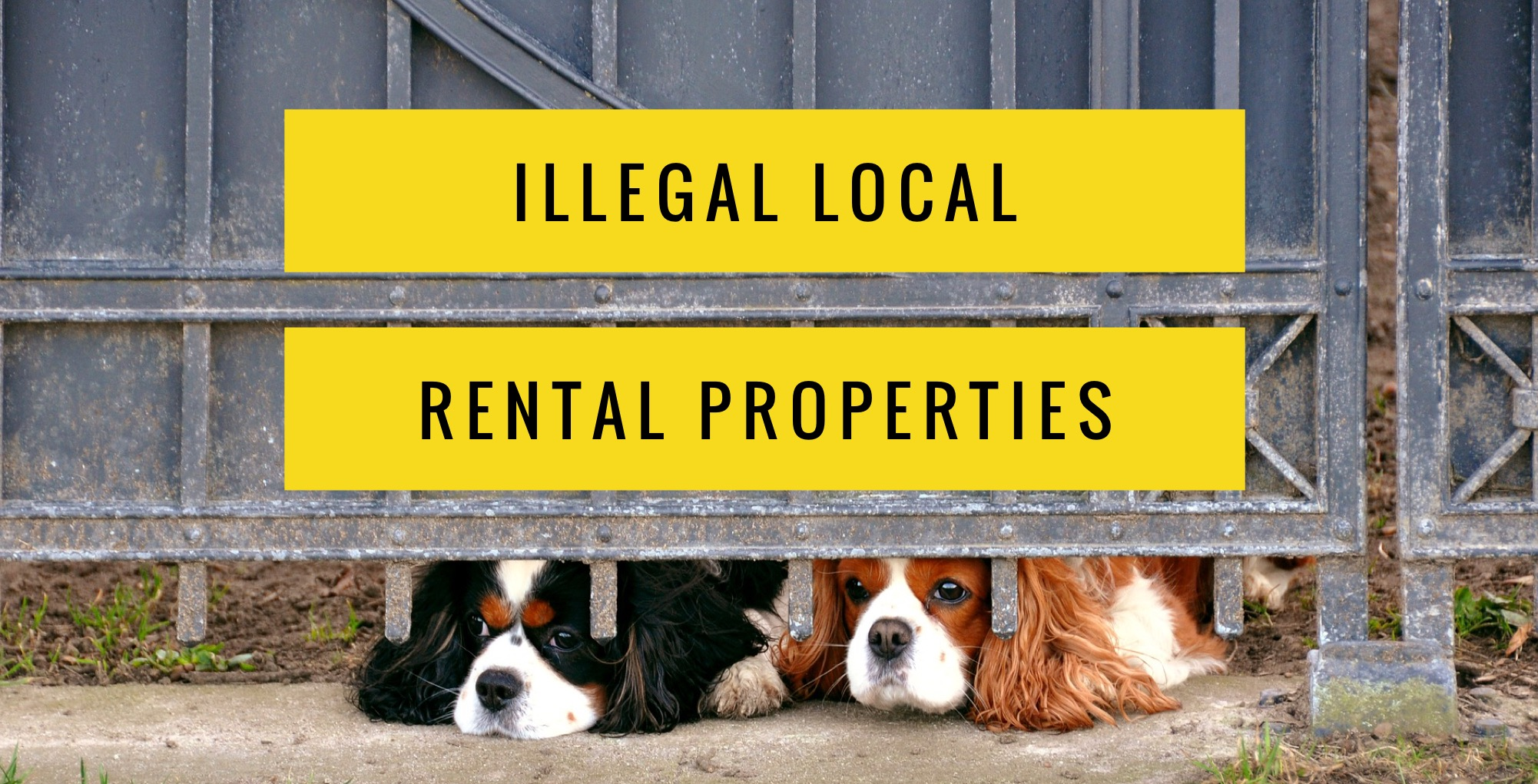One in 22 rental properties in the Canterbury area will be illegal in 2018